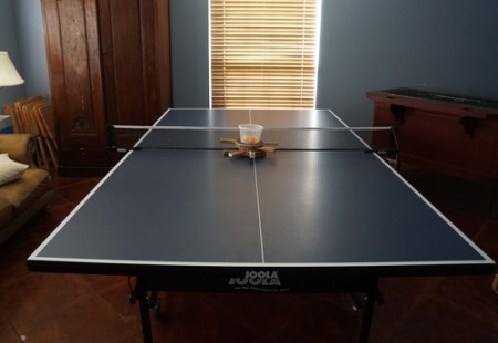 Full Size Folding Ping Pong Table