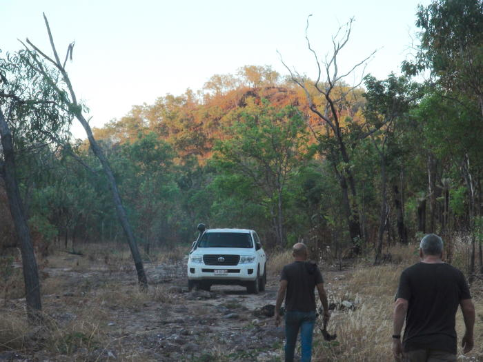 Ian Green's and Rachel Nordlinger's 4WD at sundown in the Daly region during their road trip to return recordings of the area's virtually lost Indigenous languages. Picture: Associate Professor Rachel Nordlinger.