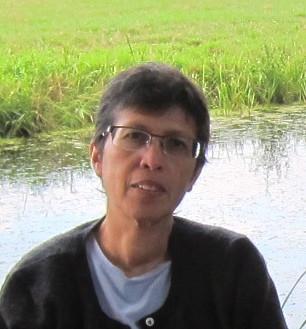 Dr Suraya  Affif