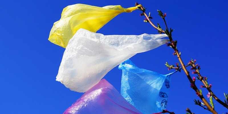 Plastic Bag Charges, Habit Disruption and Spillover Effects
