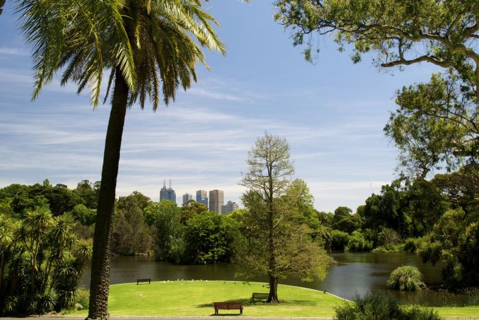 The Royal Botanic Gardens Victoria have been documenting their trees' details since the 1990s. Picture: Royal Botanic Gardens Victoria