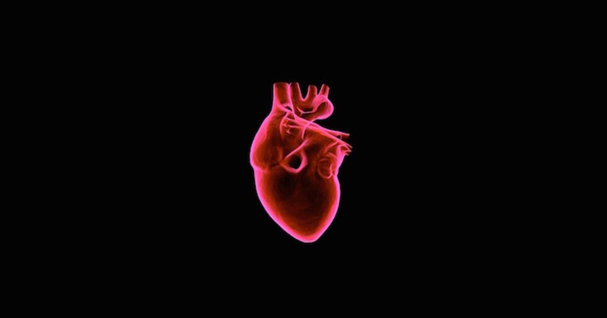 Human Heart Nature Bestsellers Sample Pack
