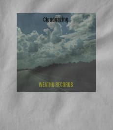WEATNU Records