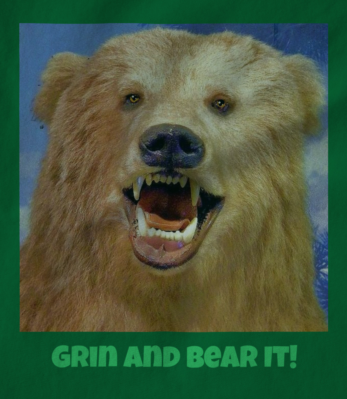 Matthew f  blowers iii   2017 grin and bear it   1506455789