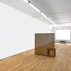 Stephen Lichty, 2016, installation view, Foxy Production, New York