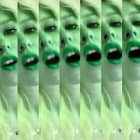 Petra Cortright, DRK PARA, 2013, webcam video, 2 min. 8 sec., PC_FP2813