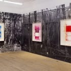 Ester Partegàs, 2010, installation view, Foxy Production, New York