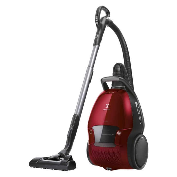 Electrolux PURED9 Animal Vacuum Cleaner