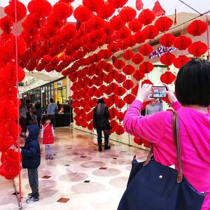Celebrate the Lunar New Year Lantern Festival
