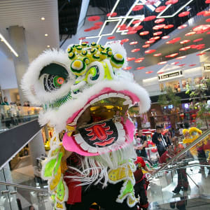 Ane Thanh Lion Dance Performance Presented by Nordstrom