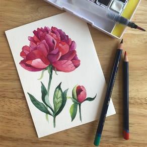 Creative Illustration Workshop