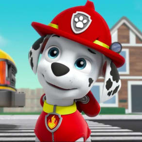 Paw Patrol Party and Meet & Greet
