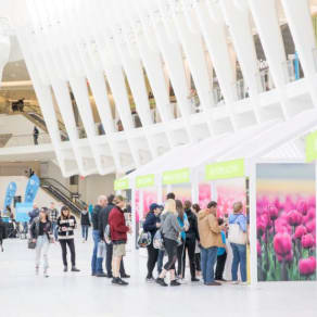 Spring Market at Westfield World Trade Center