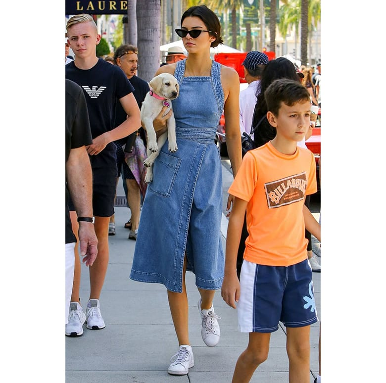 kendall jenner denim dress