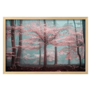 Photo Frames Albums Décor Home Decor Westfield