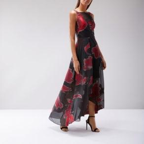 Isla Printed Maxi Dress