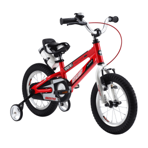 Royalbaby Space No. 1 Kids Bikes 12 Inch, 14 Inch, 16 Inch, 18 Inch, in 4 Colors, Boy's Bikes and Girl's Bikes as Gifts, Silver