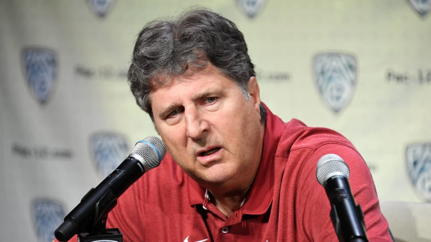 Mike Leach is perplexed by cat haters